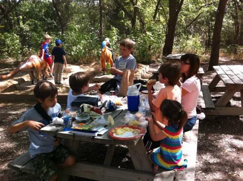 Den 3 at the Heard - Picnic Lunch